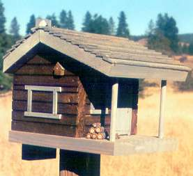 Log Cabin Birdhouse: Teak, Gray trim