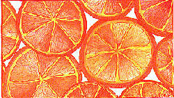"Detail - ""Oranges"", by Studio C"